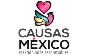 causas-mexico-2